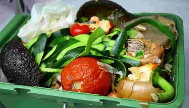 App cibo in scadenza contro lo spreco alimentare